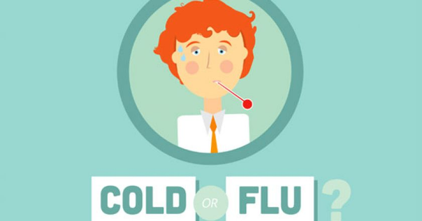 cold or flu infographic