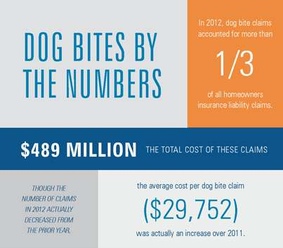 Dog Bites - Protecting Your Assets and Preventing Claims